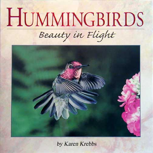 book report on the humming bird Find all available study guides and summaries for the humming bird tree by ian mcdonald the humming bird tree summary and analysis book report.